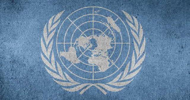 Organización de las Naciones Unidas, ONU
