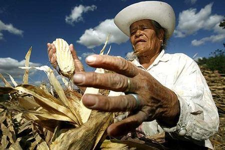 juez agrario de guárico tsj