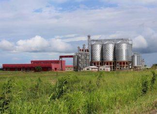 agroindustria nacional