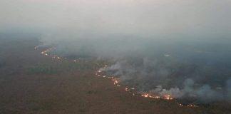 Incendios en la Amazonía.
