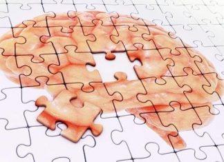 Rompecabezas con imagen de cerebro.