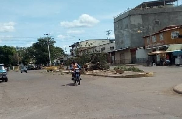 municipio julián mellado