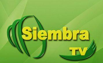 siembra tv